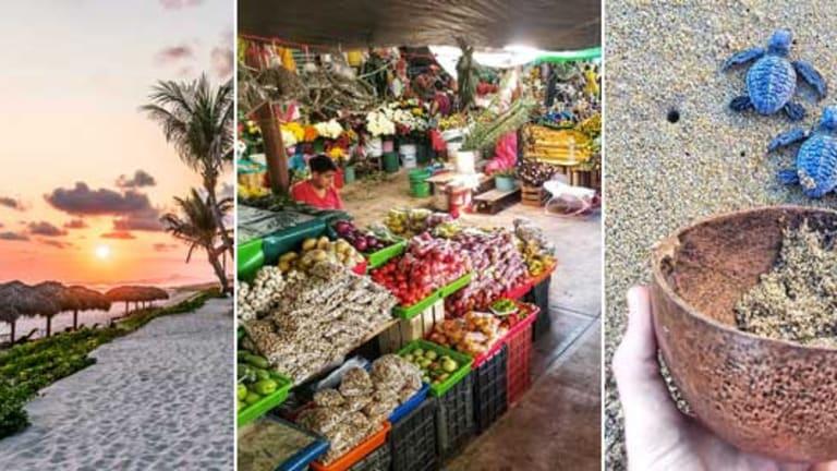 Connecting to Puerto Escondido with Vivo Resorts
